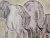 Elefanter111